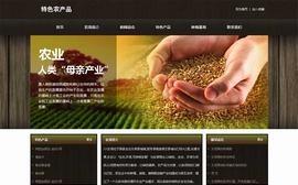 特色农产品种植公司